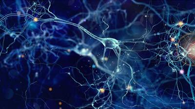 Traumatic Brain Injuries - Neurology